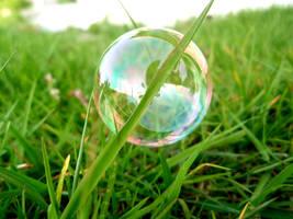 bubble by muffeline