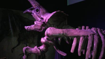 triceratops  by lunathepredchina