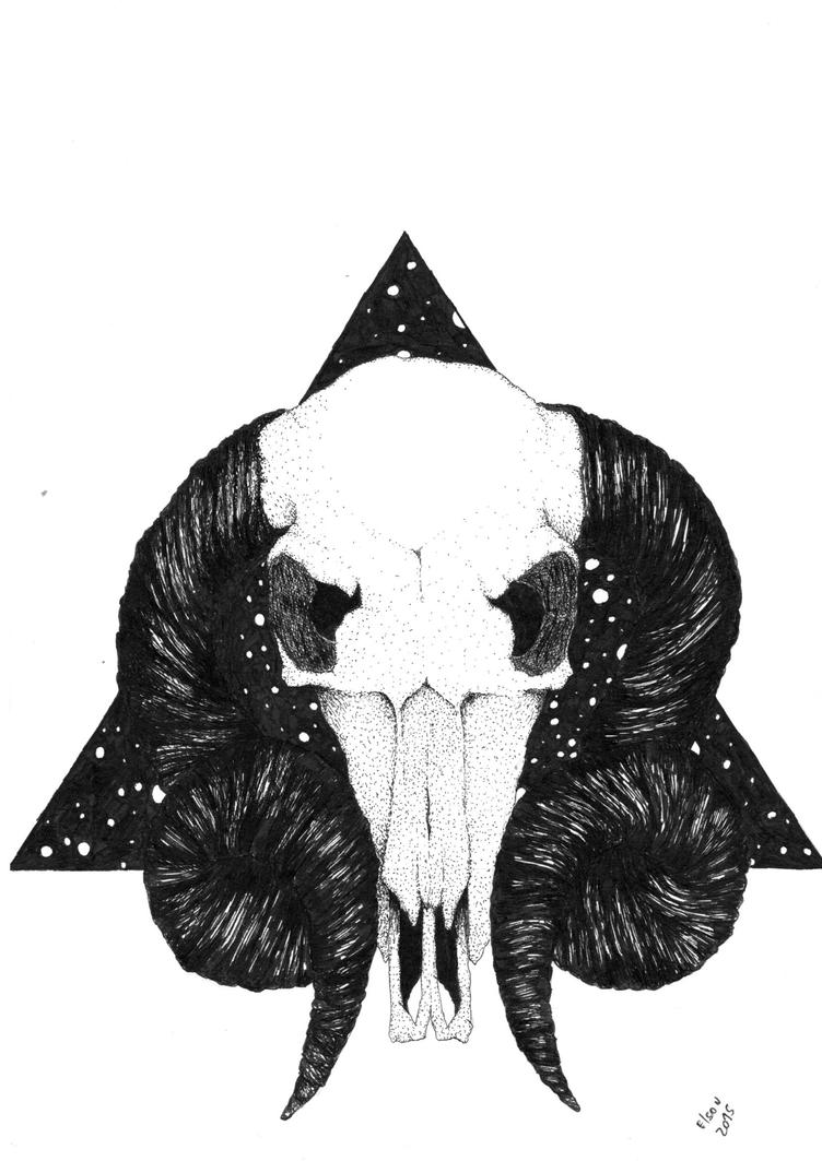Skull by Elson1993