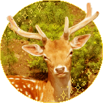 Fallow Deer Circle - f2u