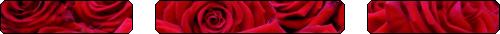 Rose Divider - f2u