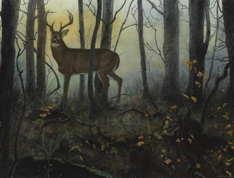 Autumn Encounter by MistiqueStudio