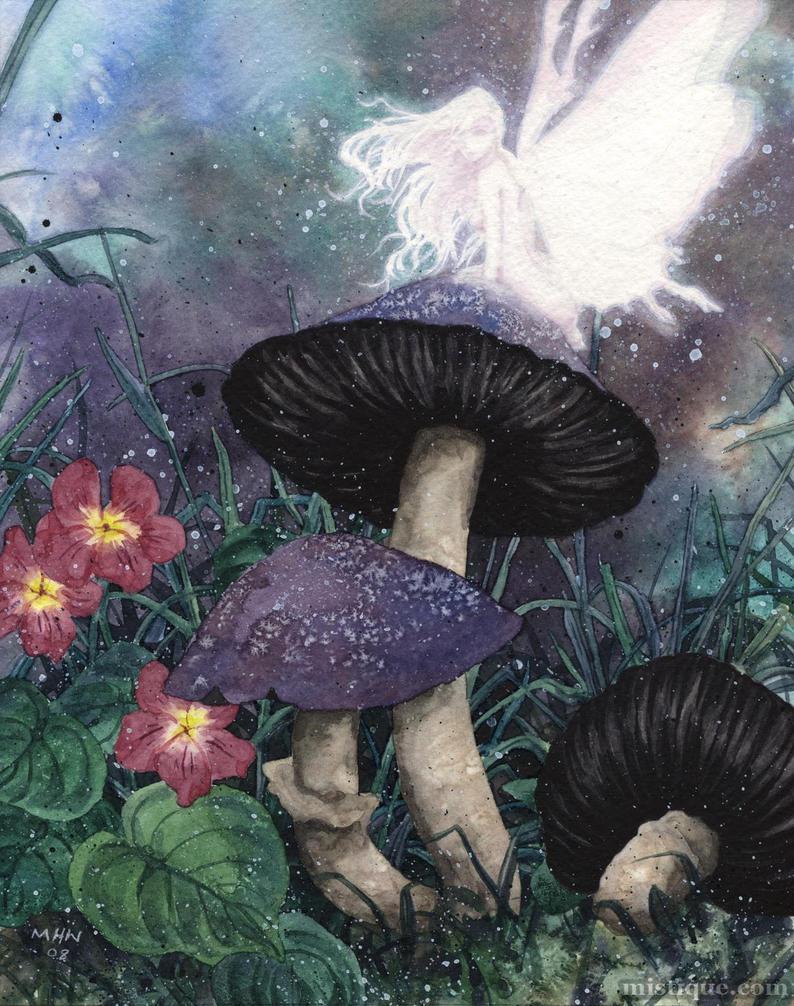 Mushrooms by MistiqueStudio