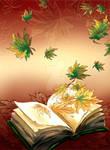 Magic of the book