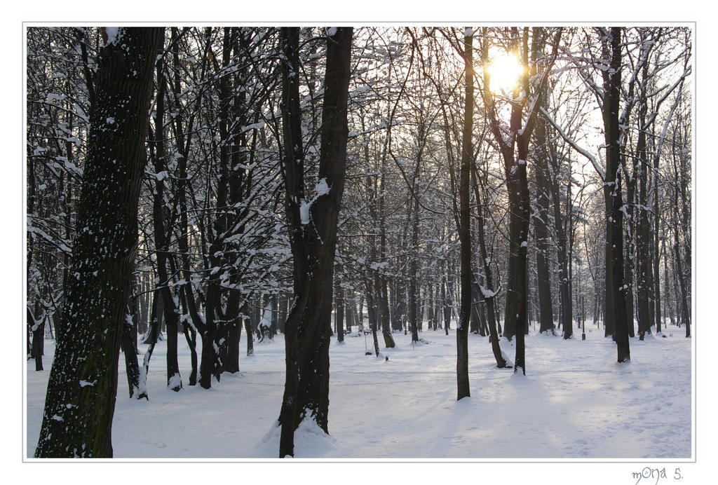 Winter sun by mona-hobbit