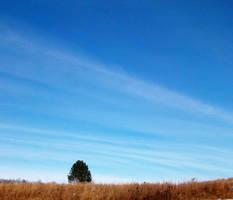 Alone: Sweeping Sky 01 by GestianPoet21