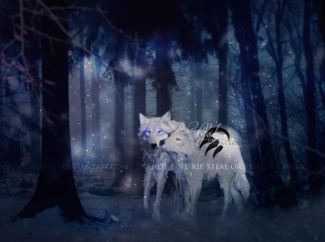 [COM] Cold steps, warm hearts by Ulfeid3