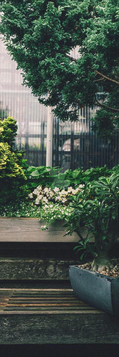 Green Plants Garden Custom Background by Ulfeid3