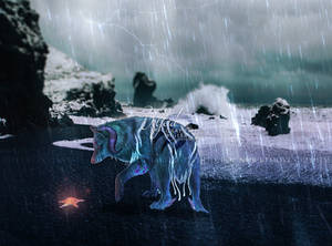 Stormy shores