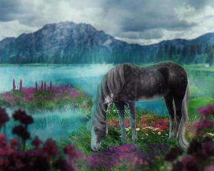 Calm waters by Ulfeid3
