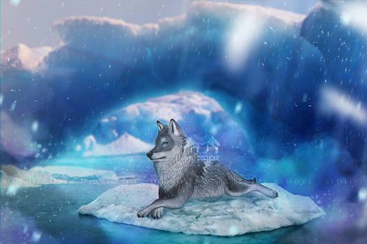 Iceberg king