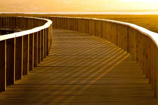 Golden boardwalk