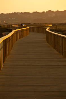 Golden boardwalk II
