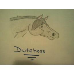 Dutchess by kellirox14
