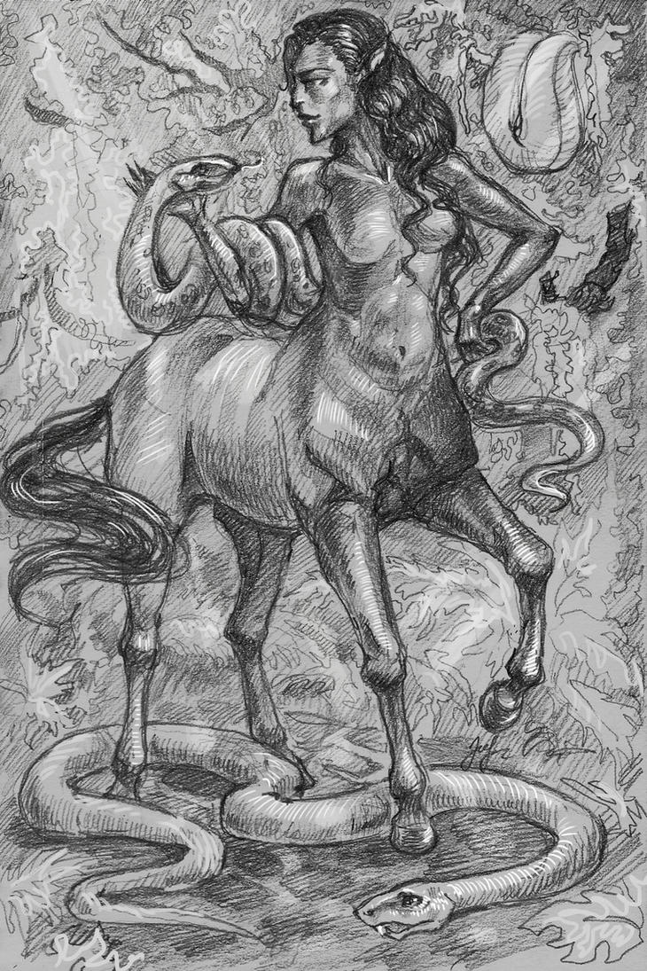 centaur by ShivaWalker