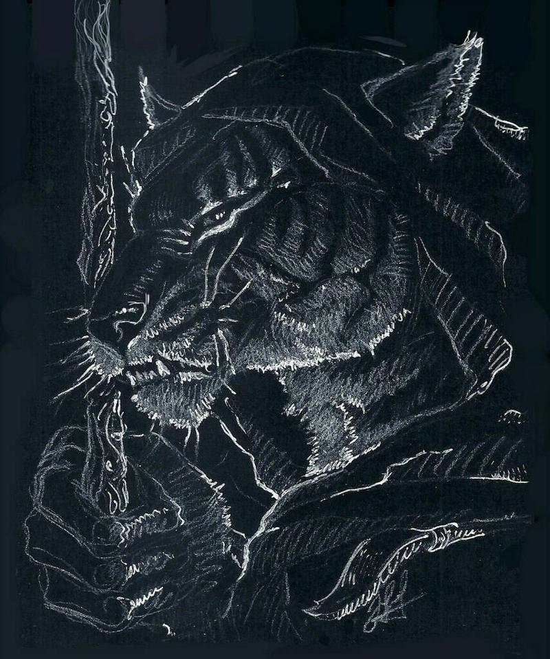 tiger-khajiit by ShivaWalker