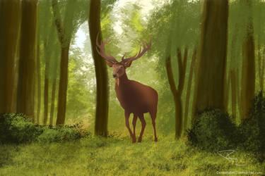 Deer WIP by DeMaria0402