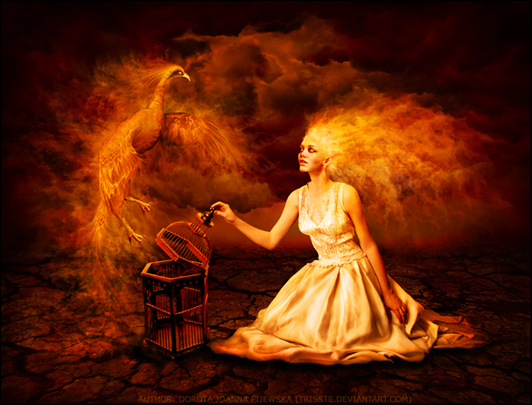 Phoenix by Trisste-stocks