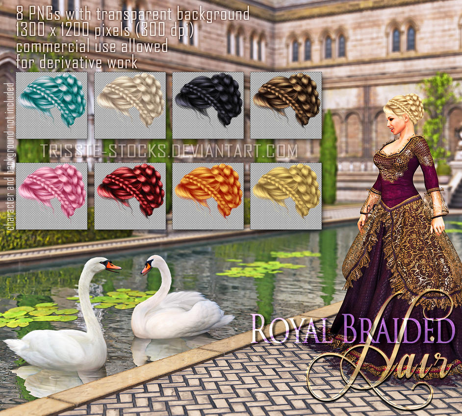 Royal Braided Hair by Trisste-stocks
