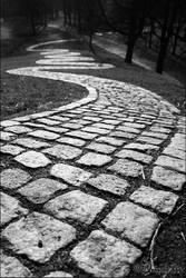 follow the path by dragona666