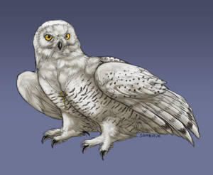 totally just a regular snowy owl