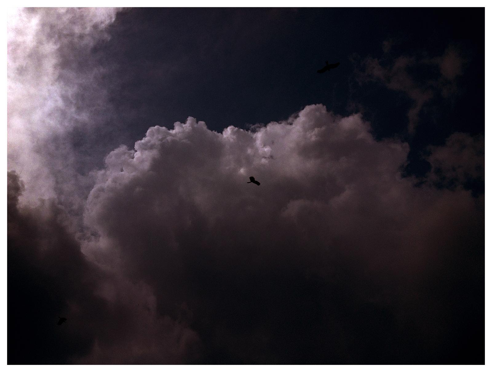 Sky Kings by SATTISH