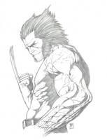 Logan by Ace-Continuado
