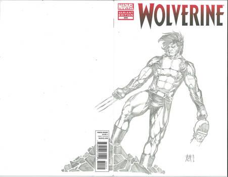 Wolverine 300 Sketch Cover