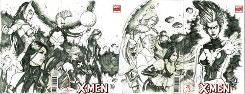The Dark Phoenix Rises by Ace-Continuado