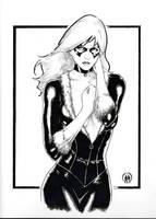 Black Cat Sketch by Ace-Continuado