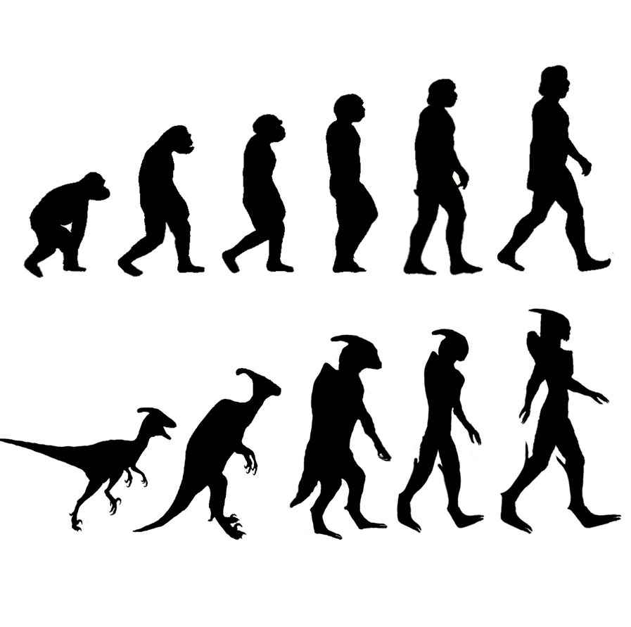 Evolution by Alcarie