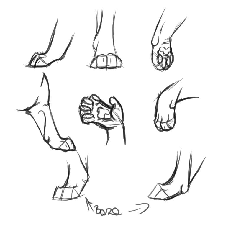 how to teach cat paw