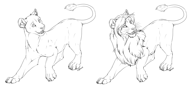 Line Art Lion : Lioness lion free lineart by afrozenheart on deviantart