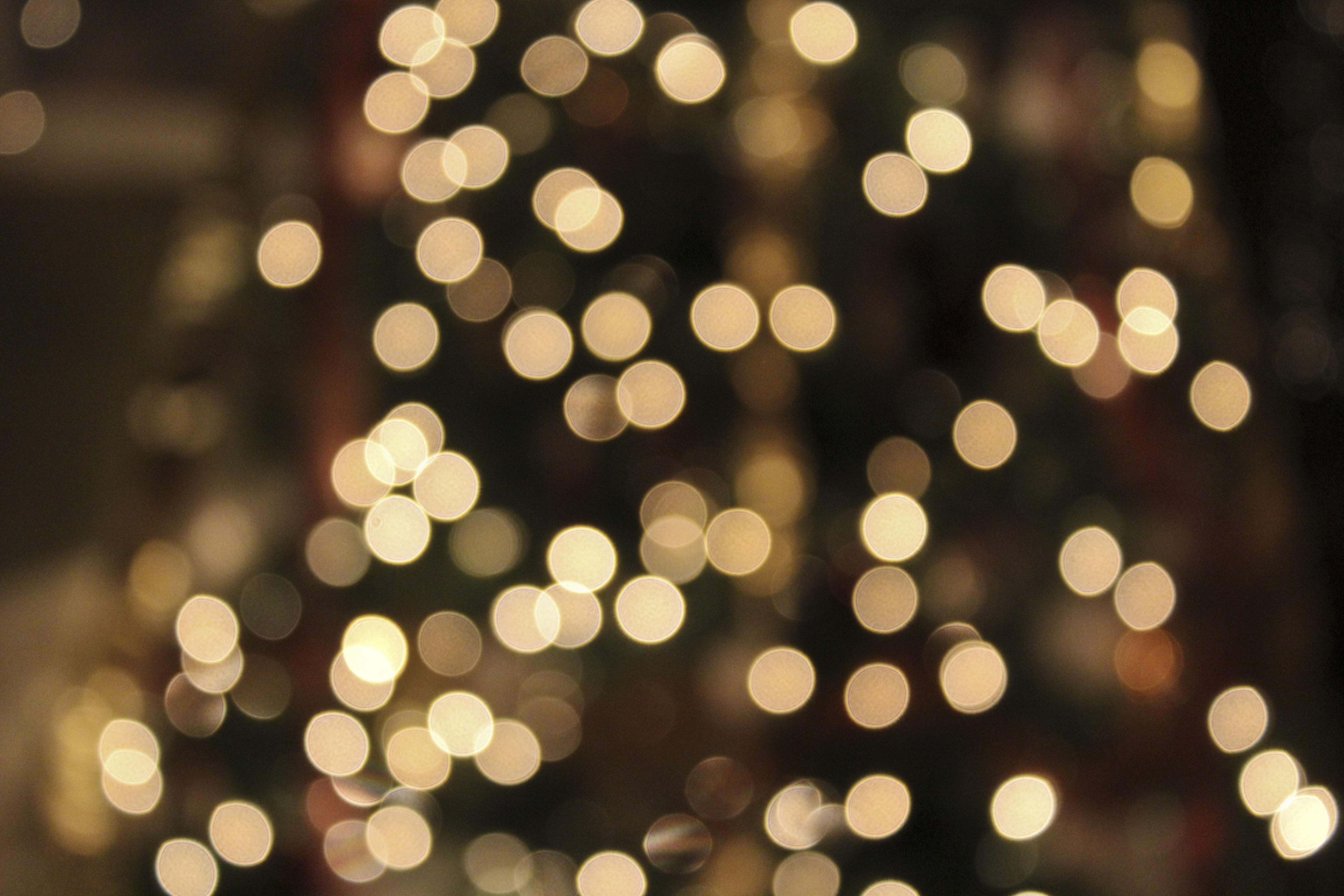 blurry christmas lights merry - photo #28