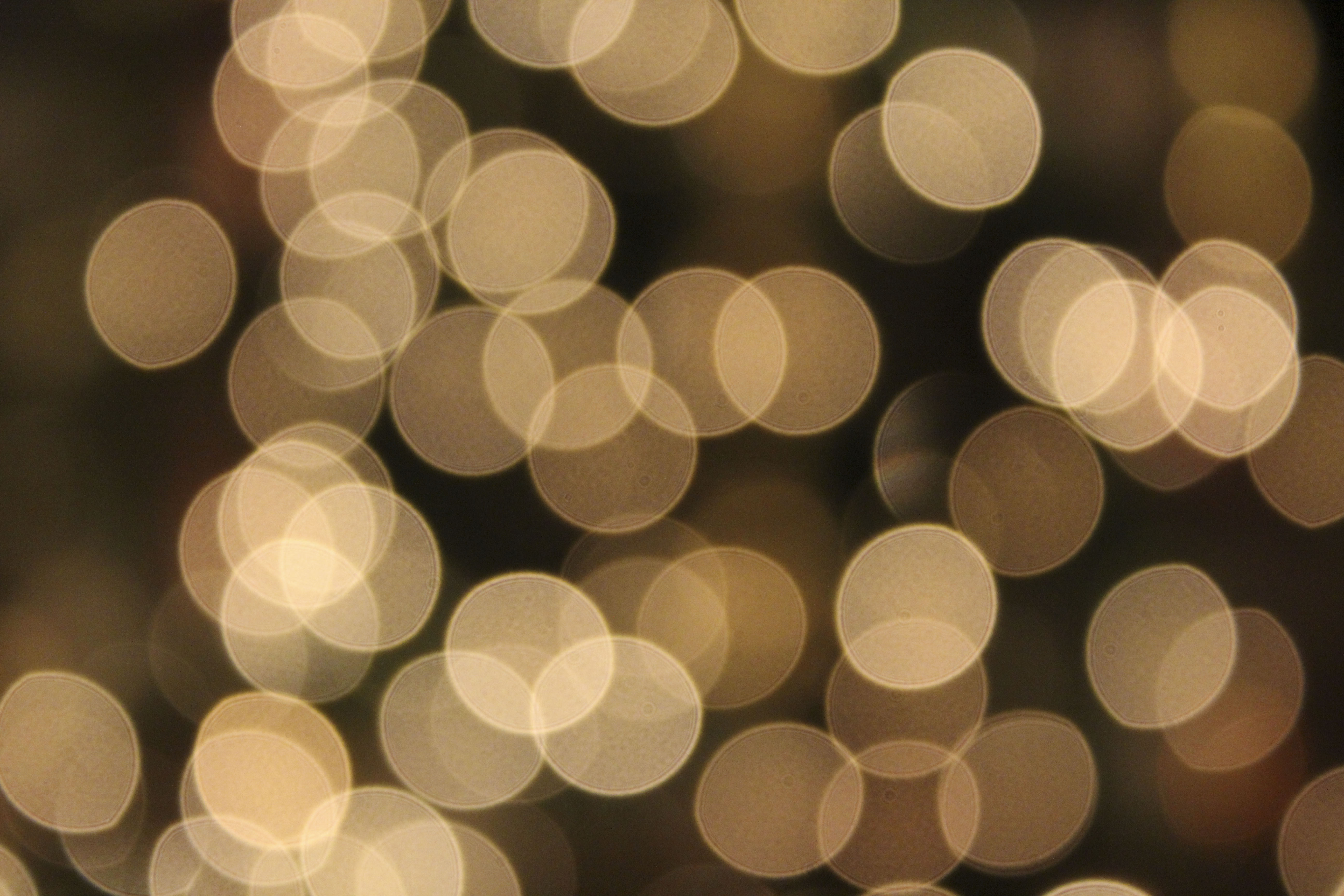 Bokeh/Blurred Christmas Lights (Hard) by pureoptic on DeviantArt