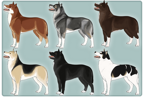 Husky Adopts 3/6 OPEN by Lucid-Dimensions