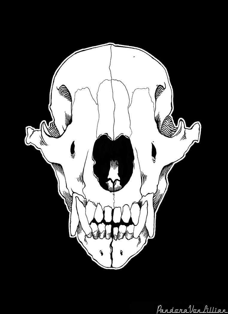 Bear Skull Drawing Bear Skull by unholypa...