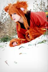 Red Fox by Ilireaa