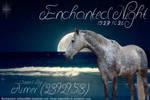 EnchantedNight