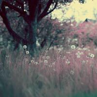 elysian fields by NoirFeu
