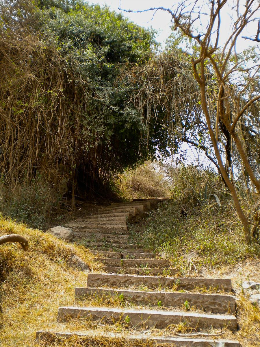 Forgotten Stairs by MrDannyD