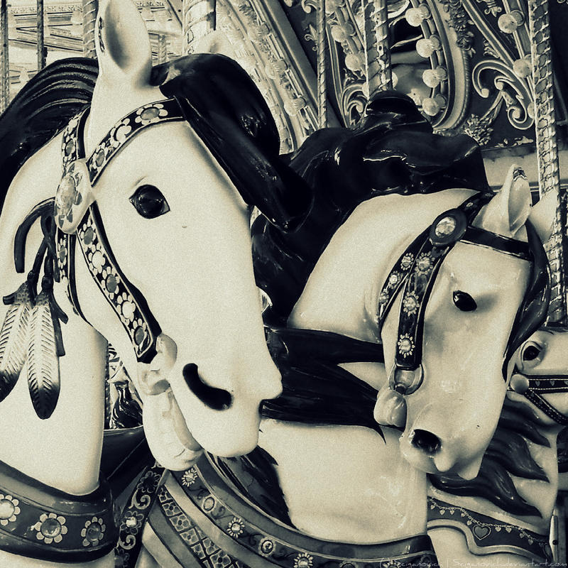 ..Carousel.. by SCiganovich