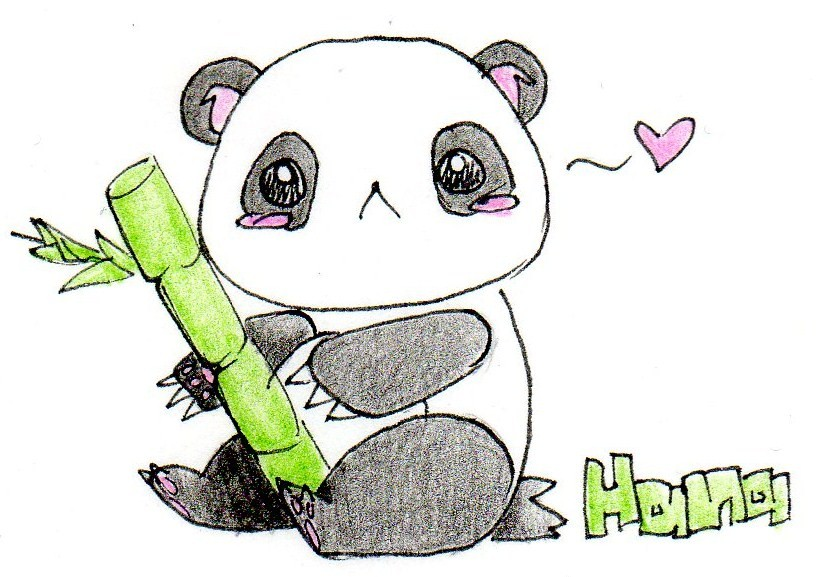 Cute Panda Drawing By Fishpaddle