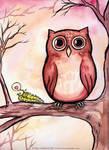 Awkward Owl