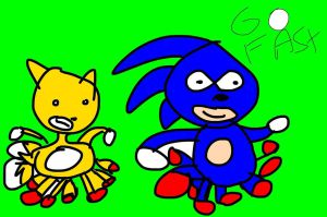 sanic_and_taels_go_fast_by_fimberarchive