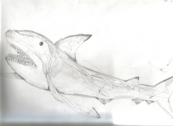 Shark by Blarghmeister