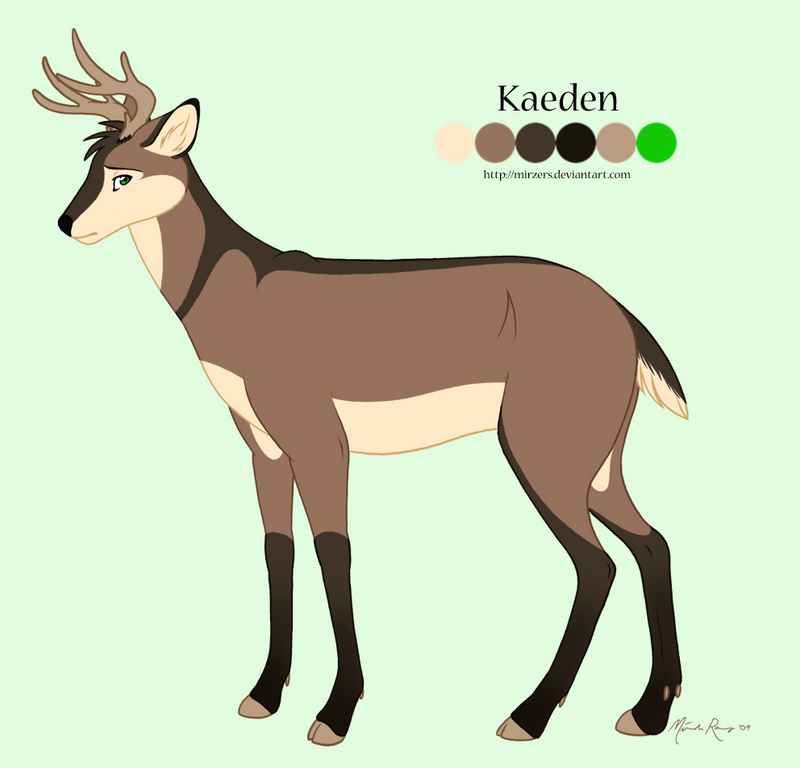 Kaeden Reference Sheet By Mirzers On DeviantArt