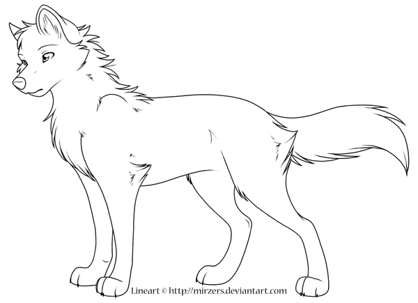 Wolf Lineart : Wolf lineart by mirzers on deviantart