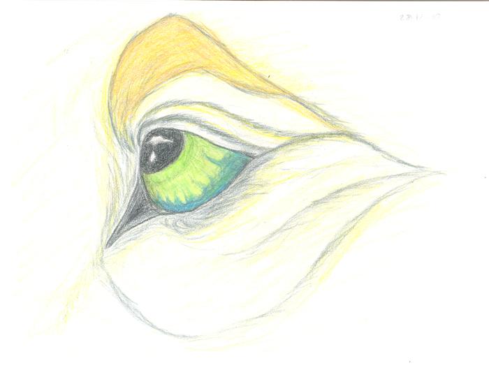 Un ojo by Ayrsayle