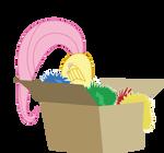 fluttershy in box
